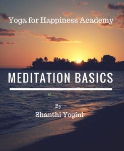 Meditation Basics Report