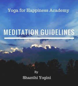 Meditation Guidelines Report